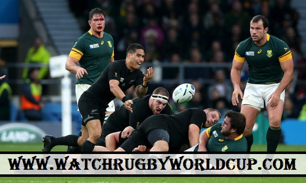 Watch Semifinal Rugby World Cup South Africa vs All Blacks Online